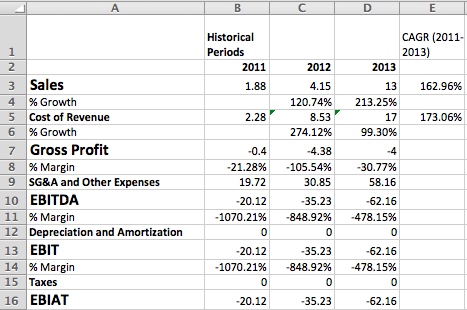 Castlight Income Statement